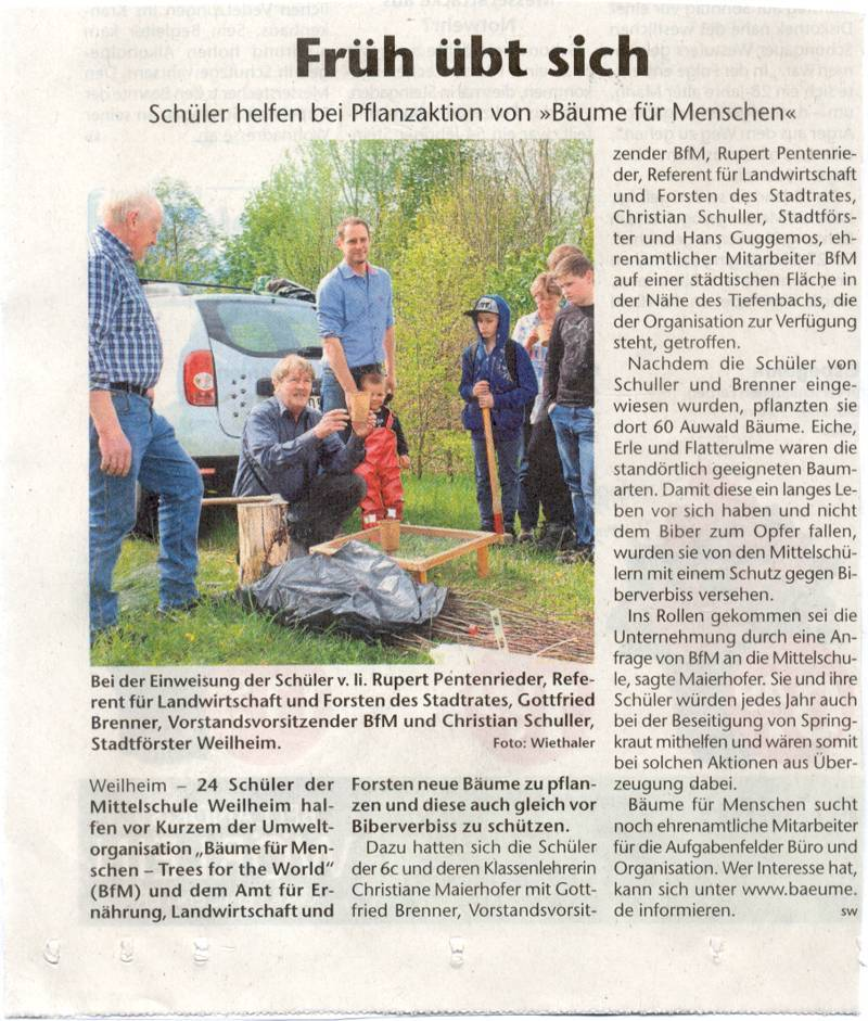 Wiederaufforstung Schulwald - Münchner Merkur